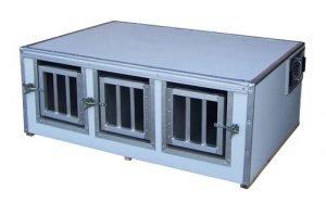 Beagle Boxes