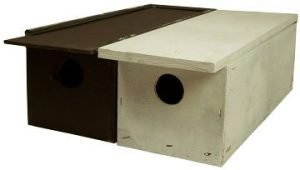 Weasel Boxes